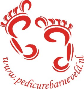 PvVB Logo